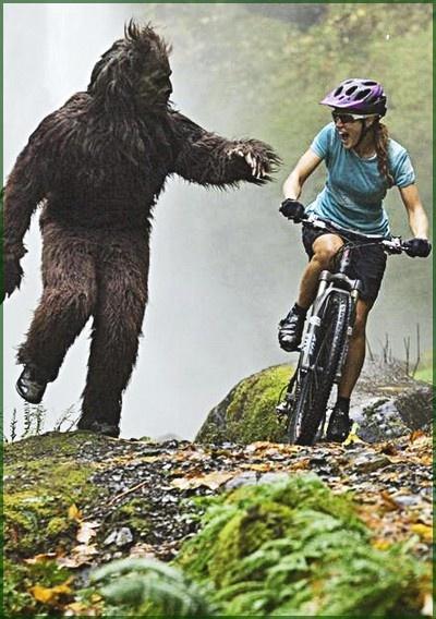 Отдай велосипед!!!