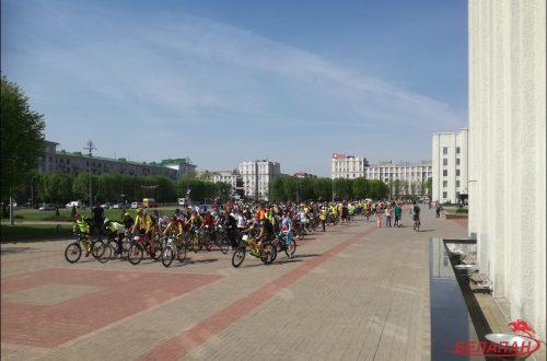 велосипеды могилев
